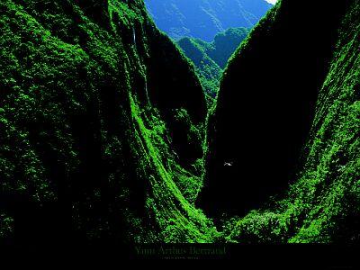 arthus-bertrand-yann-gorges-of-the-bras-de-caverne-8200388