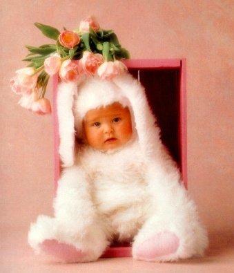 bebe-lapin