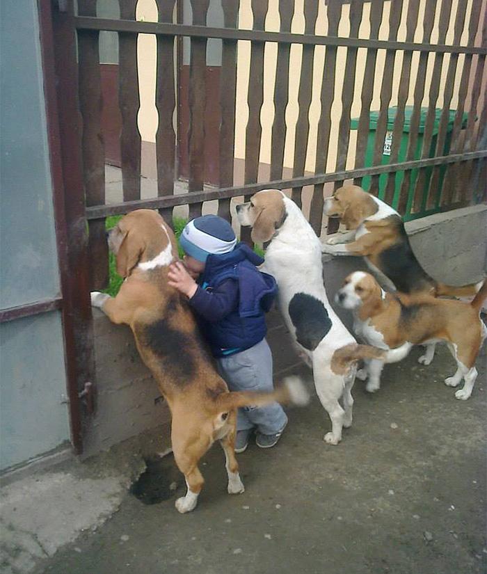20-photos-adorables-qui-prouvent-que-vos-enfants-ont-besoin-dun-animal-de-compagnie1