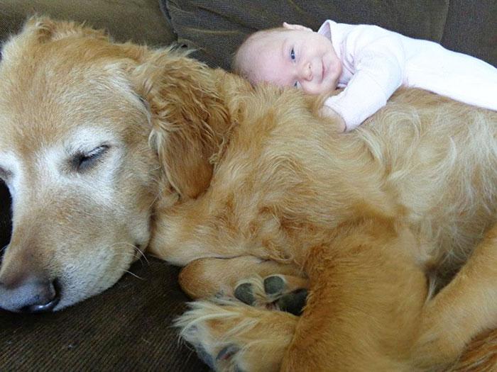 20-photos-adorables-qui-prouvent-que-vos-enfants-ont-besoin-dun-animal-de-compagnie10