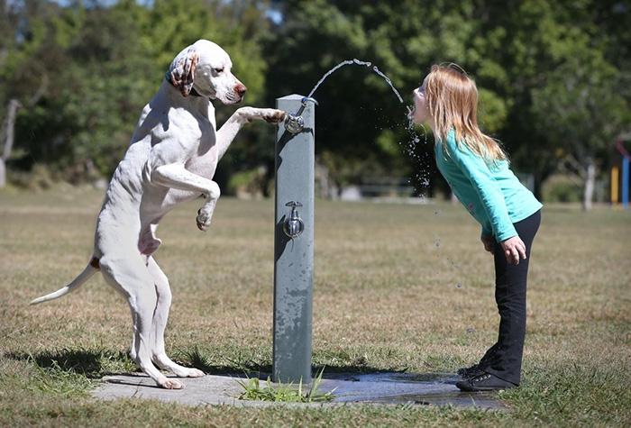 20-photos-adorables-qui-prouvent-que-vos-enfants-ont-besoin-dun-animal-de-compagnie15