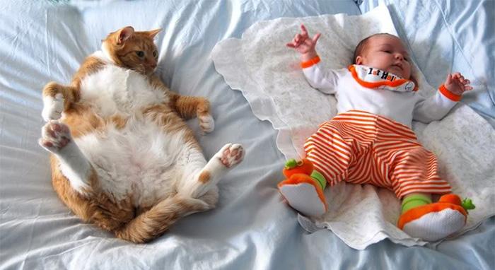 20-photos-adorables-qui-prouvent-que-vos-enfants-ont-besoin-dun-animal-de-compagnie17