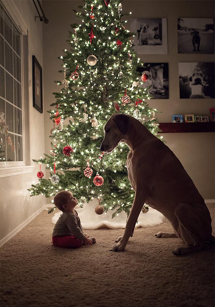 20-photos-adorables-qui-prouvent-que-vos-enfants-ont-besoin-dun-animal-de-compagnie2