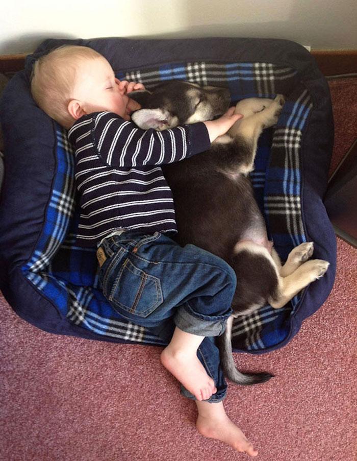 20-photos-adorables-qui-prouvent-que-vos-enfants-ont-besoin-dun-animal-de-compagnie5