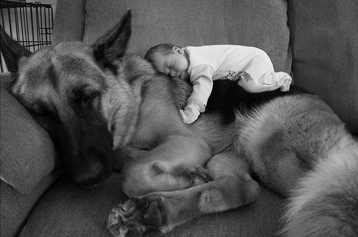 20-photos-adorables-qui-prouvent-que-vos-enfants-ont-besoin-dun-animal-de-compagnie9
